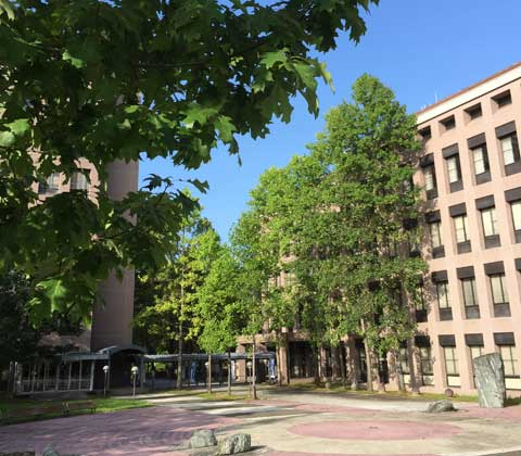University of Hyogo, School of Science